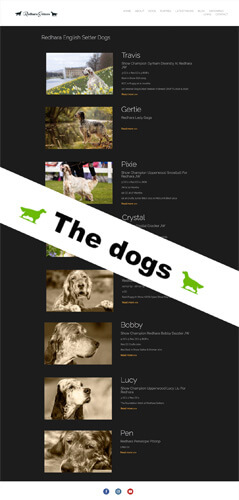 how to build a dog breeder website