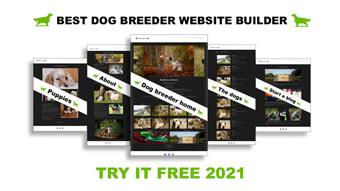 how do i create a dog breeder website