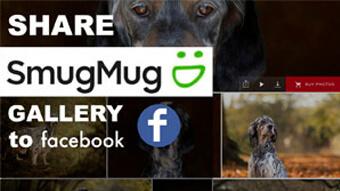 how to share a smugmug gallery