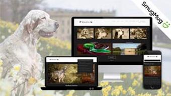 dog breeding web design