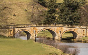 dog friendly days out and places to visit peak district